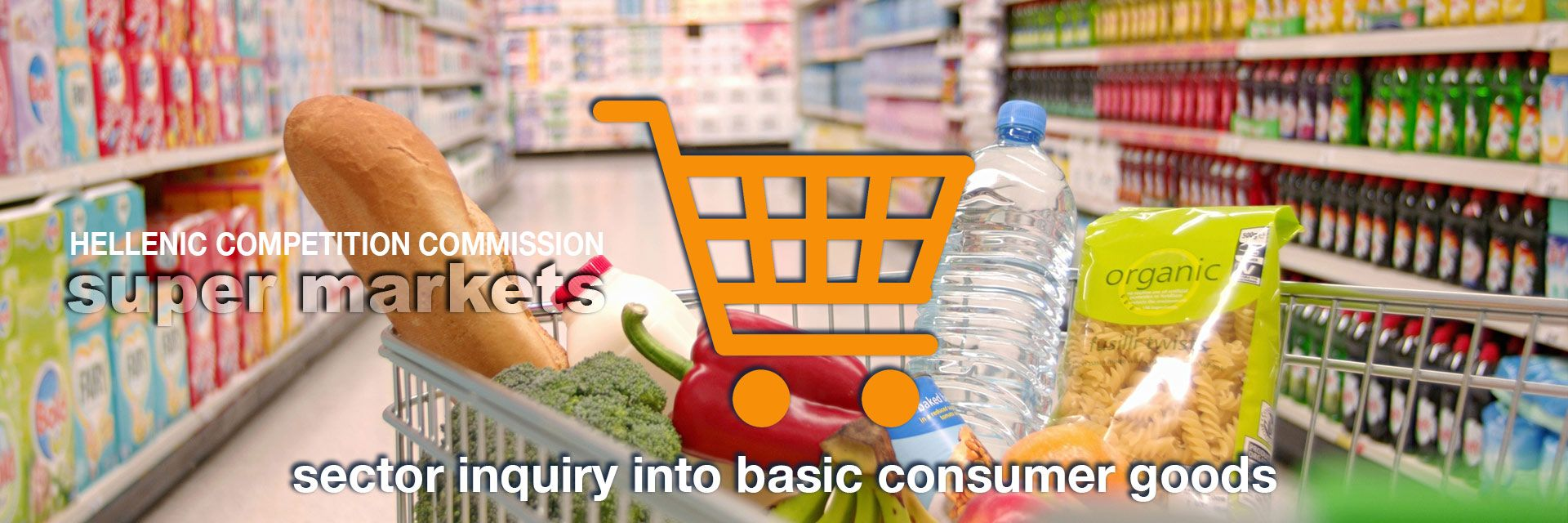 Sector inquiry into basic consumer goods